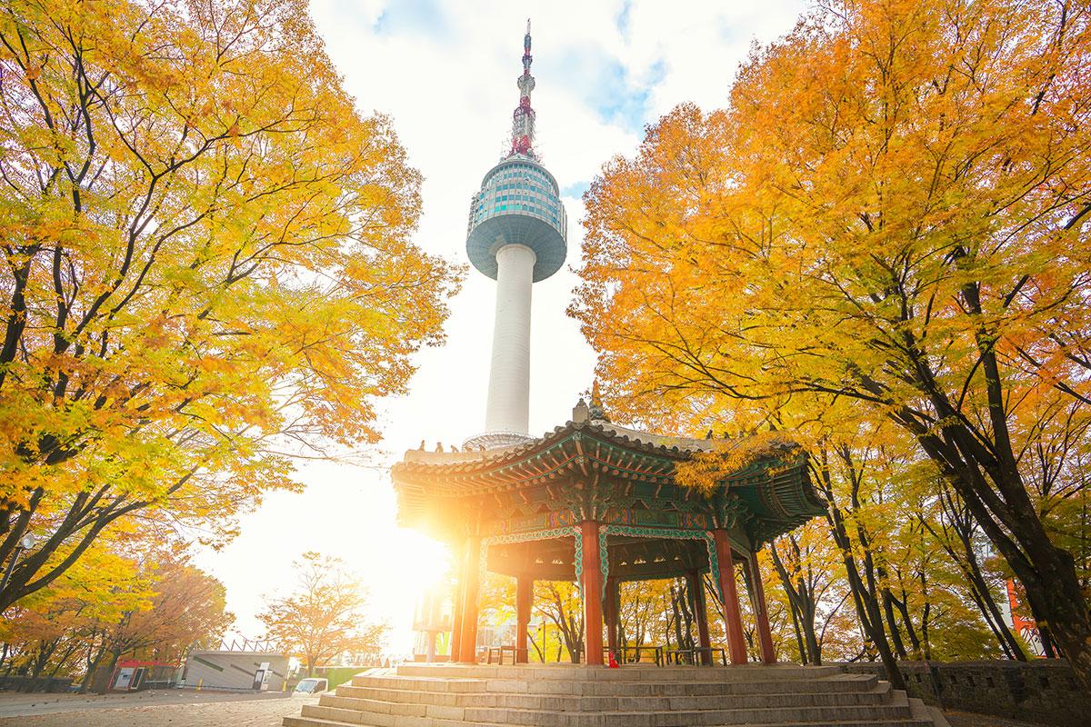 fall_DHL5.jpg